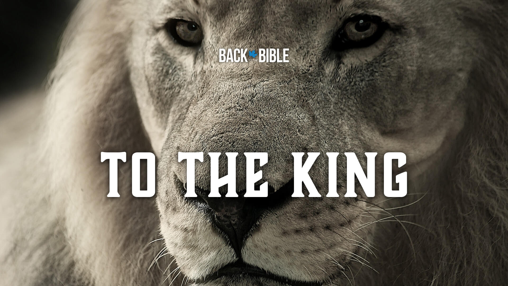 To the King by Dr. John Neufeld | Back to the Bible Canada