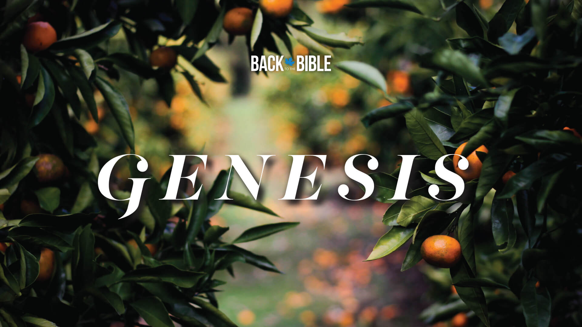 Genesis - A Series by Dr. John Neufeld - Back to the Bible Canada