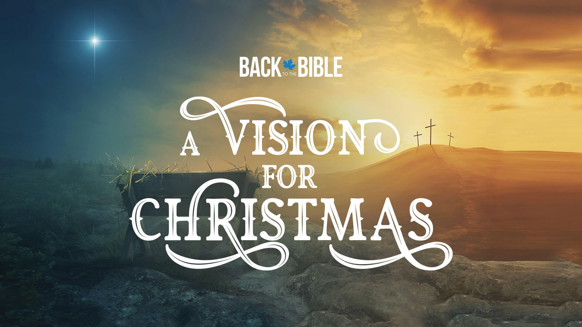 A Vision for Christmas