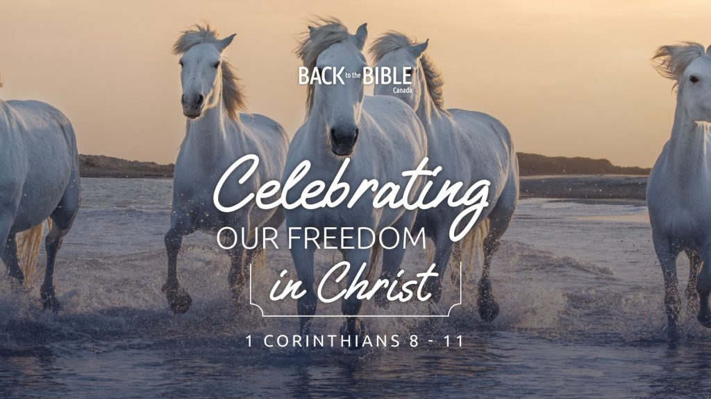 Celebrating Our Freedom in Christ