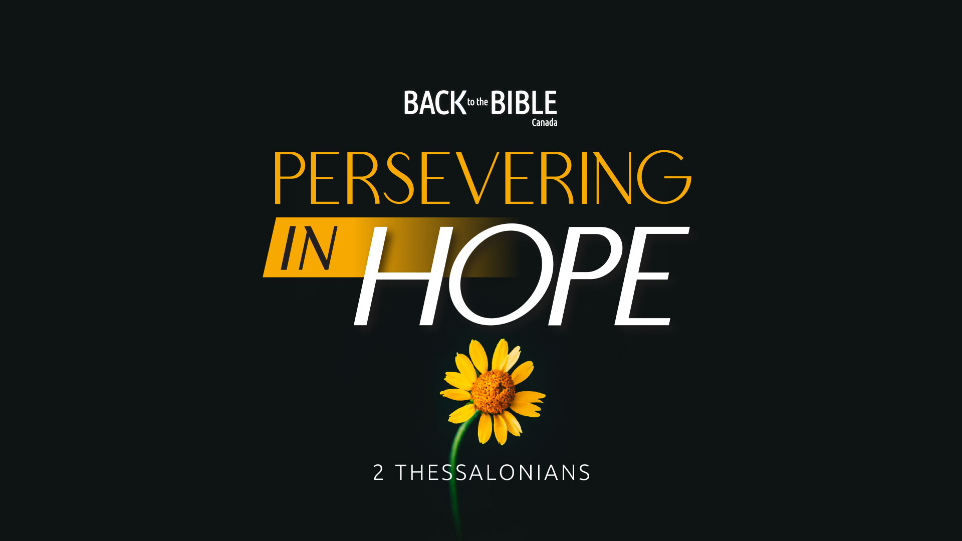 Persevering in Hope